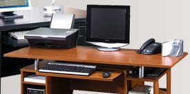 pic_cat_computer_desks